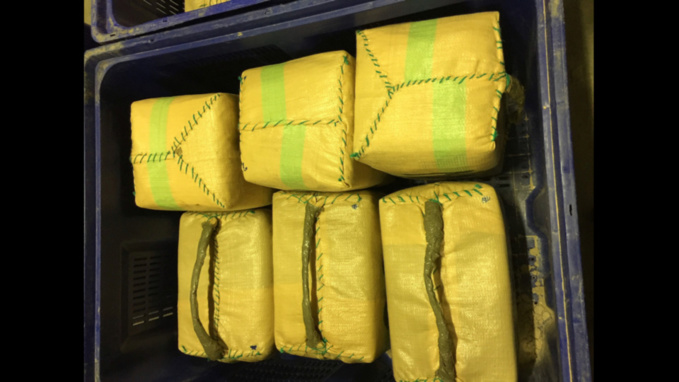 La drogue était conditionnée dans des sacs en tissu plastifié (Photo©FDouane Française)