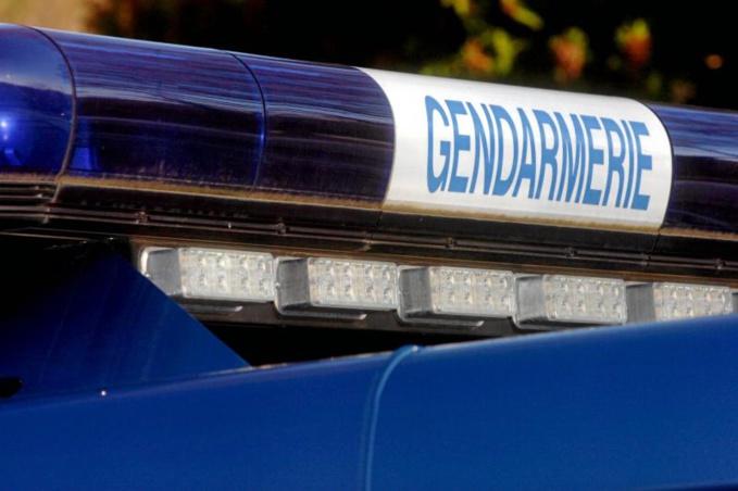 L'homme au fusil a été interpellé par les gendarmes, ainsi que sa compagne. Tous deux étaient fortement alcoolisés (Illustration)