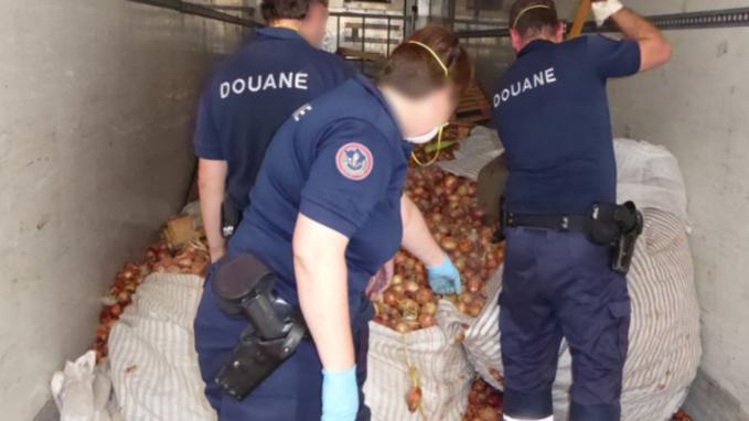 Les valises étaient dissimulées dans la cargaison d'oignons (Photo @Douane française)