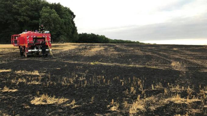 Octeville-sur-Mer : 5000 m2 de récolte de lin détruits par un incendie d'origine indéterminée