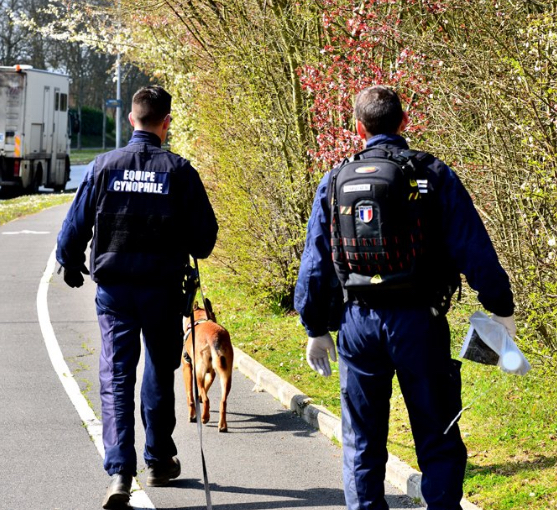 Une cinquantaine de policiers, un hélicoptère équipé d'une caméra thermique et un chien pisteur ont été mobilisés pour rechercher le conducteur en fuite du véhicule qui a percuté le policier (photo @ DDSP78/Twitter)
