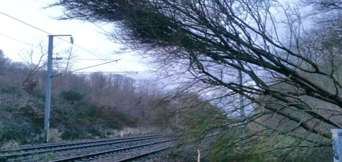 Le trafic ferroviaire est quasi-inexistant sur le réseau normand : des arbres sont tombés ou ont endommagé les installations électriques (photo extraite du compte Twitter de la @SNCF)