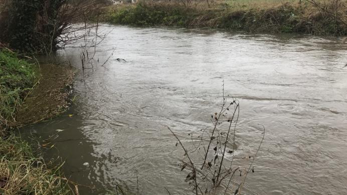 Cet affluent de l'Eure est à la limite de déborder à Pacy-sur-Eure (Photo © infoNormandie)