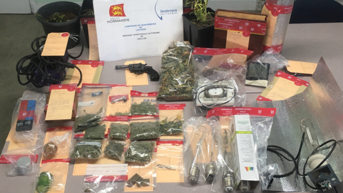 Les gendarmes ont découvert au domicile du mis en cause tout le matériel nécessaire à la culture d'herbe de cannabis, mais aussi une arme (Photo © Gendarmerie27)
