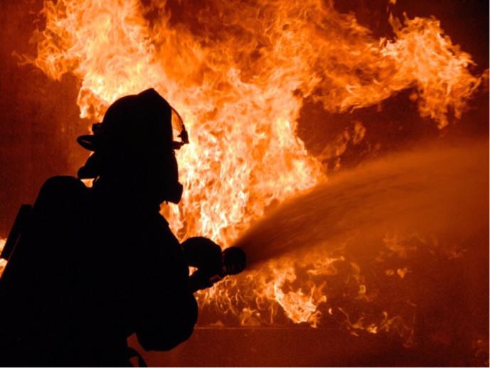 Seine-Maritime : 50 bovins périssent dans l'incendie de trois hangars agricoles à Saint-Romain-de-Colbosc