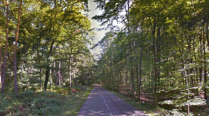 Le corps sans vie a été découvert en bordure de la sente des Lapins pas très loin de la route départementale 86 (Illustration © Google Maps)