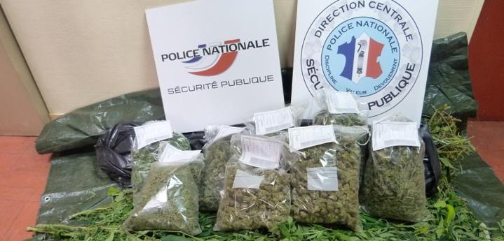 Les policiers ont saisi une vingtaine de sachets d'herbe de cannabis et 400€ en petites coupures (Photo d'illustration © DDSP)