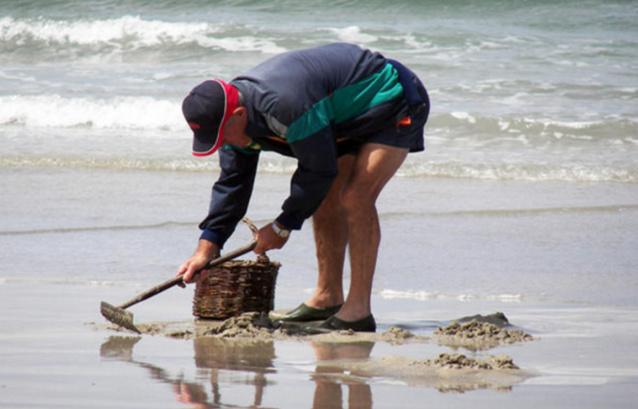 La préfecture maritime met en garde les pêcheurs à pied - Illustration © D. R.