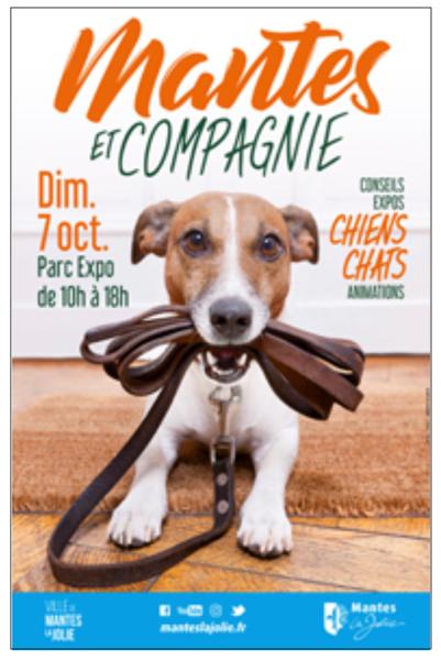 Mantes & Compagnie : pour les amoureux des animaux, rendez-vous le dimanche 7 octobre