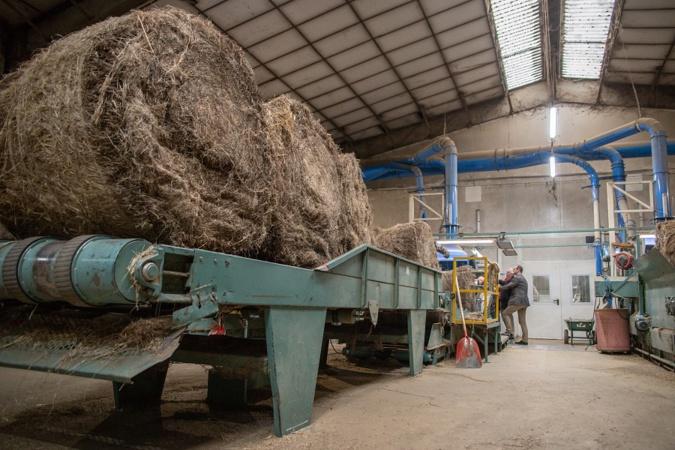 Le lin du Neubourg, dans l'Eure, habille le monde entier : une aide de 250 000€ accordée à la coopérative de teillage