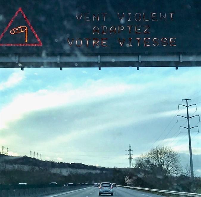 Yvelines : deux arbres n'ont pas résisté aux rafales de vent à Maisons-Laffitte et Conflans