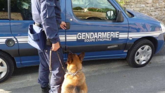 Un important dispositif a été déployé mardi matin au Neubourg lors de l'interpellation vers 6 heures de trois suspects - Illustration @ gendarmerie nationale