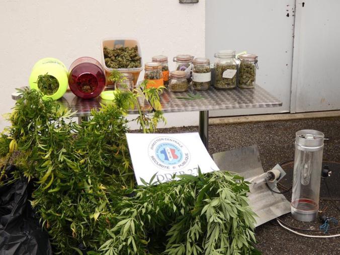 Les produits stupéfiants ont été saisis et seront détruits - Photo @ DDSP27/Twitter