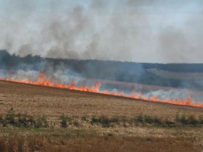 Trente-sept sapeurs-pompiers ont été engagés sur les deux incendies qui ont détruit 17 hectares de récoltes et de chaumes - illustration © infoNormandie