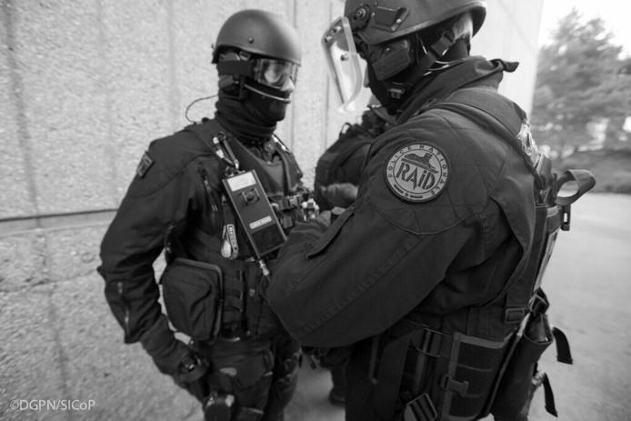 Une dizaine d'hommes du Raid, est intervenue sur place - Illustration © DGPN