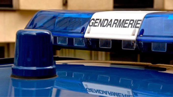 Le jeune homme a été entendu par les gendarmes de Brionne pour conduite sans permis et sans assurance, ainsi que délit de fuite et conduite sous l'emprise de stupéfiants - illustration