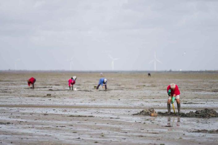 L'appel à la prudence s'adresse plus particulièrement aux pêcheurs à pied et aux promeneurs sur les plages - Illustration © iStock