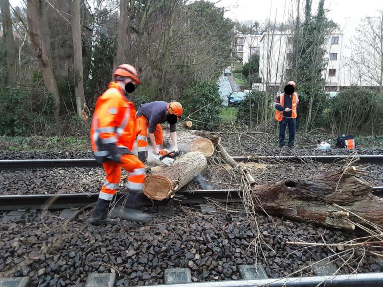 Les employés de la SNCF ont été mobilisés une partie de la journée pour remettre en état les installations endommagées par la chute d'un arbre - Photo @ SNCF /Twitter