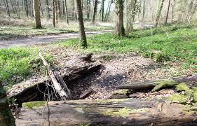 Le corps à moitié calciné du lycéen avait été découvert à cet endroit, en forêt de Beauvoir, par des gardes forestiers