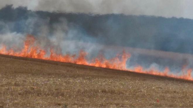 Le feu s'est propagé sur 2 000 m2 de sous bois - Illustration © infoNormandie