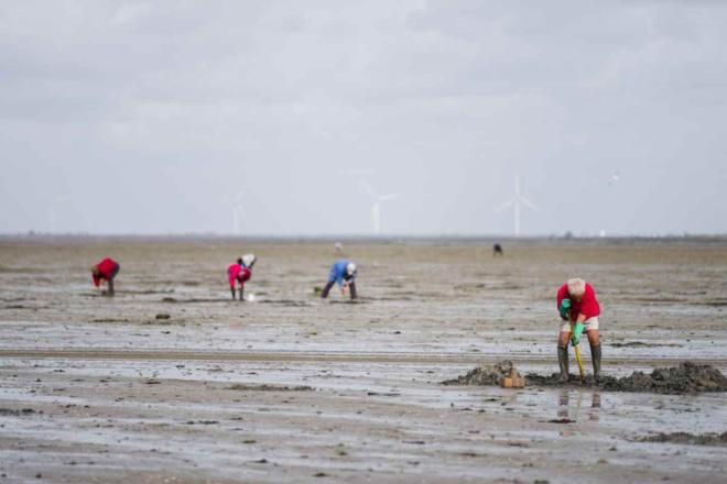 La préfecture maritime met en garde plus particulièrement les pêcheurs à pied et les promeneurs - illustration @ iStock