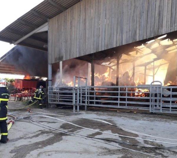 L'intérieur du bâtiment de 2 000 m2 était complètement embrasé à l'arrivée des sapeurs-pompiers - Photo © SDIS76