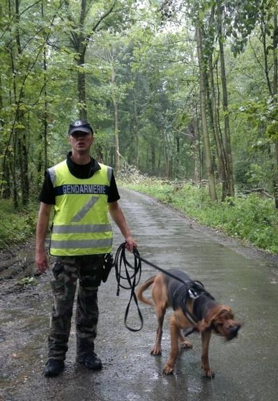 La gendarmerie a mobilisé deux chiens pisteurs pour tenter de retrouver le disparu