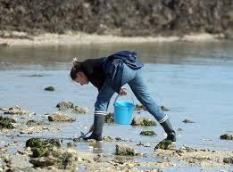 Promeneurs et pêcheurs à pied doivent être particulièrement vigilants durant les grandes marées