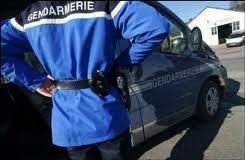 La lutte contre les cambriolages mobilise une quarantaine de gendarmes