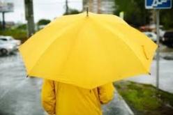 L'an dernier, quelque 800 parapluies ont été distribués en Seine-Maritime