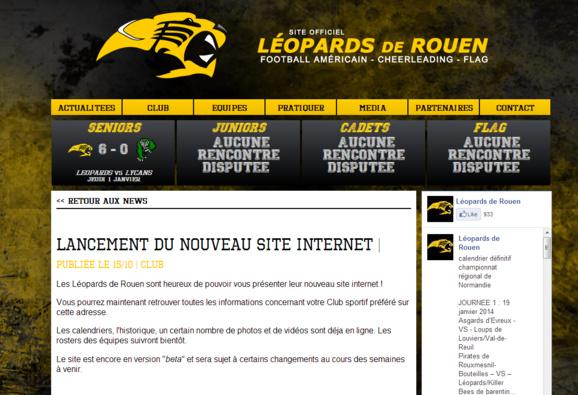 Reproduction de la home page du nouveau site des Léopards