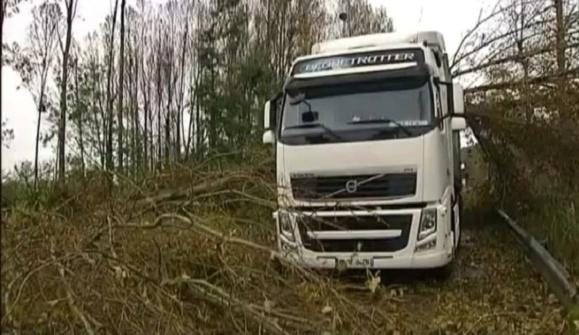 Une soixantaine d'arbres se sont couchés sur l'A131 dans le secteur du pont de Tancarville (Photo capture d'écran France TV info)