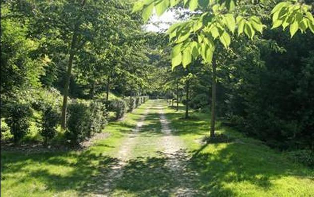 """""""Rendez-vous aux Jardins"""" : deux jours pour découvrir le patrimoine végétal et paysager du Havre"""