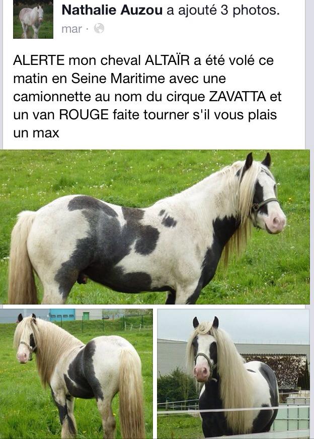 Qui a volé Altaïr en Seine-Maritime ?