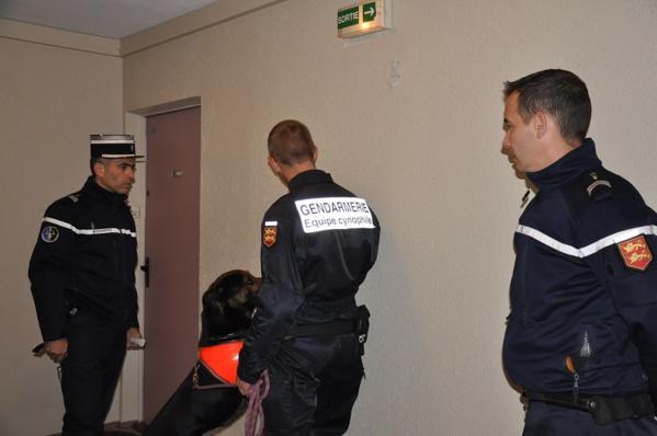 Le chien spécialisé dans la recherche de produits stupéfiants a inspecté les moindres recoins dans les parties communes de certains immeubles suspectés d'abriter de la drogue (Photo @infoNormandie)