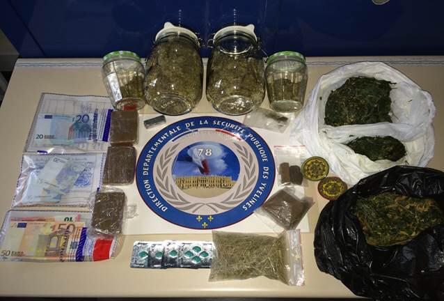 Herbe, plants et résine de cannabis, ai si qu'une importante somme d'argent ont été saisis lors des perquisitions au domicile du couple (Photo : DDSP78)