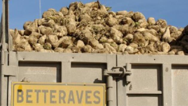 Eure : trois camions de betteraves victimes de projectiles sur la RD613, à Nassandres