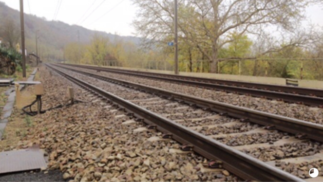 Le train circulait à 140 km/h lorsqu'il a percuté le septuagénaire qui s'est jeté sous la locomotive (Illustration @infoNormandie)
