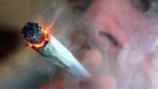 Le Trait : deux fumeurs de joints trahis par l'odeur de cannabis lors d'un contrôle de gendarmerie