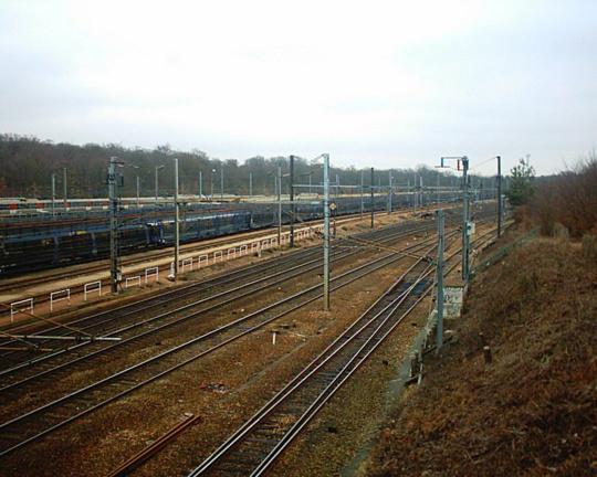 La gare d'Achères-triage est implantée en forêt de Saint-Germain-en-Laye (Illustration)