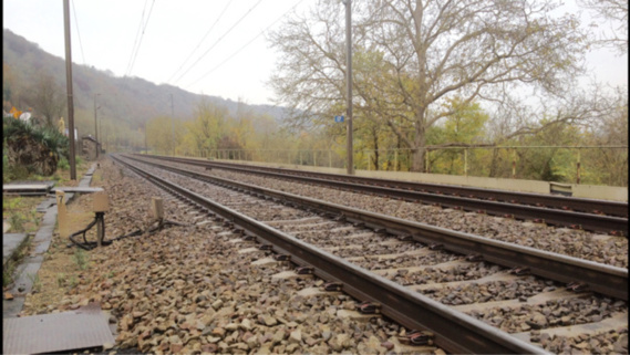 La jeune fille se serait jetée sous le train qui circulait en direction de Rouen (Illustration@infoNormandie)