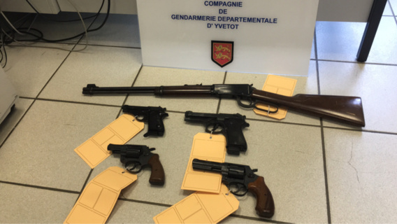 Les armes saisies (Photo@Gendarmerie nationale)