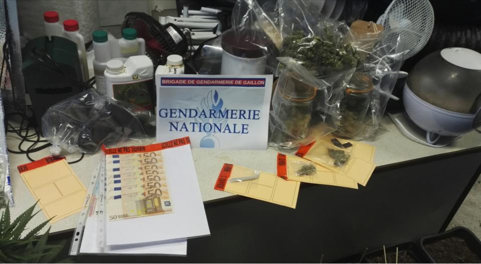 De l'argent et des produits stupéfiants ont été saisis au domicile respectif des mis en cause (photo@gendarmerie)
