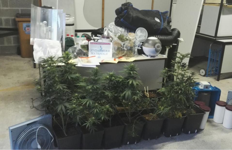 Trafic de drogue démantelé dans l'Eure : cinq jeunes gens arrêtés par les gendarmes de Gaillon