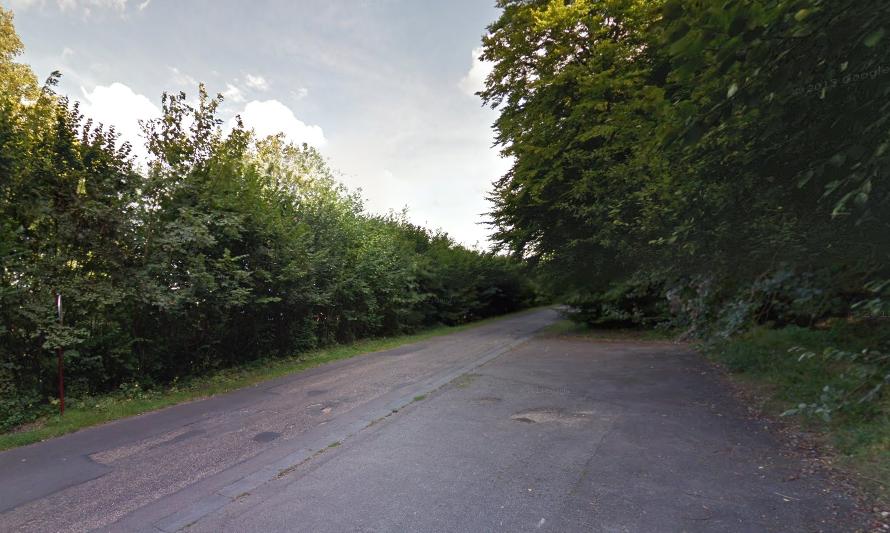 Le drame est survenu dans un massif forestier situé à Caudebec-lès-Elbeuf