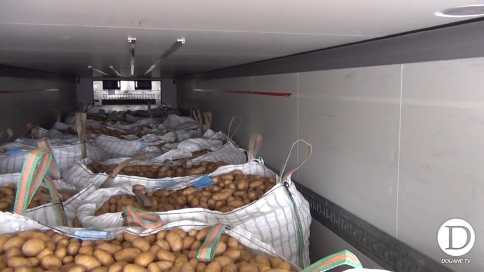 La drogue, près de 1,2 tonne, était dissimulée dans des sacs parmi le chargement de pommes de terre (Capture d'écran @ douane)