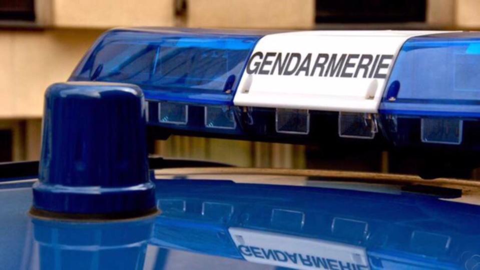 Une enquête est ouverte par la gendarmerie afin d'identifier l'automobiliste qui a pris la fuite (Illustration)