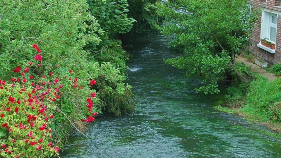 La rivière l'Eaulne traverse le Pays de Bray et le Petit Caux (Illustration @ Wikipedia)