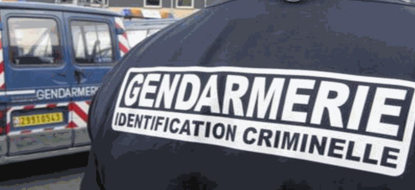 De gos moyens de recherche ont été dép^loyés dans le département. Les agresseurs n'ont pas été retrouvés (Illustration © Gendarmerie)