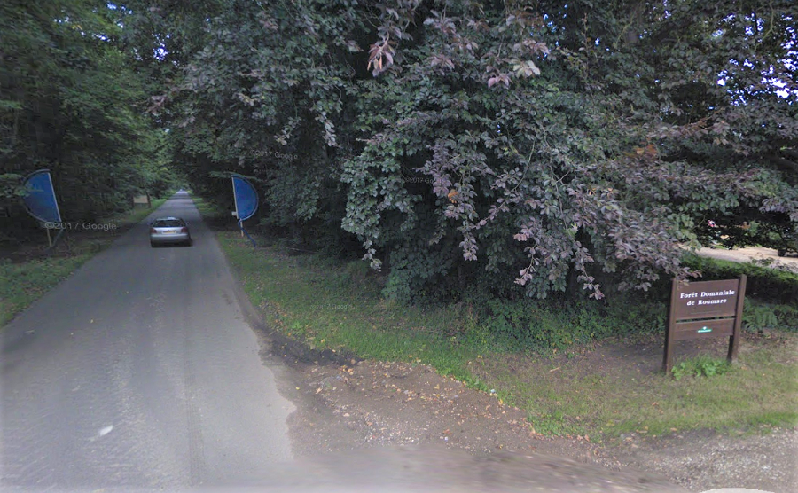 Les deux dieppoises ont été découvertes en bordure de la forêt domaniale de Roumare, à Canteleu - Illustration